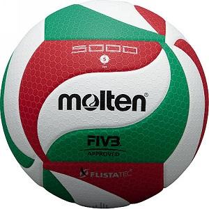 Balon de Voleibol Molten 5000 Oficial FIVB